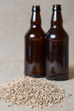 Amber Malt and bottles. Amber Malt and Beer Bottles Royalty Free Stock Photos