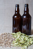 Amber Malt and Summer Hops brewing. Amber Malt and Summer Hops and Beer Bottles Royalty Free Stock Photography