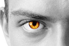 Amber man's eye Royalty Free Stock Image