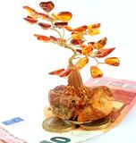 Amber money tree stock images