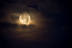 Free Amber Moon Stock Photos - 12428143