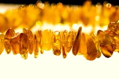 Amber necklace in sun Stock Photos