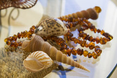 Amber necklace and shells over straw basket Royalty Free Stock Photos