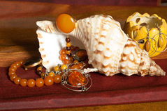 Amber necklaces on seashell Royalty Free Stock Photos