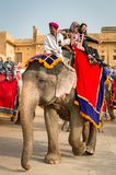 Amber Palace, Jaipur, Rajasthan state, India. JAIPUR, INDIA - JAN 19, 2016: Unidentified Indian man rides an elephant with tourists. Indian elephants used to be royalty free stock photo