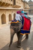 Amber Palace, Jaipur, Rajasthan state, India. JAIPUR, INDIA - JAN 19, 2016: Unidentified Indian man rides an elephant with tourists. Indian elephants used to be royalty free stock photography