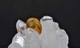 Amber on rock crystal Stock Images