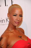 Amber Rose Stock Image
