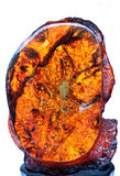 Amber and scorpion inner Stock Photo