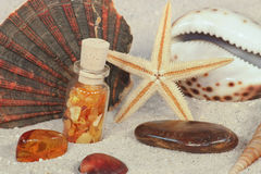 Amber and seashells. Amber in bottle, amber stone, starfish and seashells in sand Stock Images