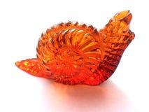 Amber snail, closeup Royalty Free Stock Photography