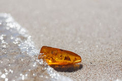 Amber stone with insect inclusion. On sand at baltic seashore Royalty Free Stock Image