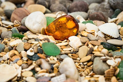 Amber stone. Mineral amber. Rosin yellow amber. Sunstone on a beach of pebbles. Stock Images