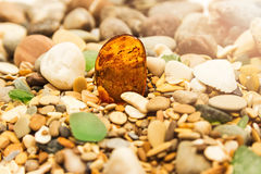 Amber stone. Mineral amber. Rosin yellow amber. Sunstone on a beach of pebbles. Stock Photos