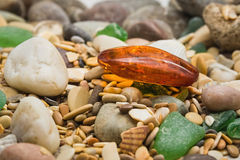 Amber stone. Mineral amber. Rosin yellow amber. Sunstone on a beach of pebbles. Stock Photo