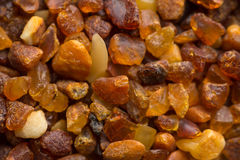Amber stones from the beach of the Baltic Sea Stock Photo