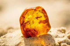 Amber in sun on a beach of the Baltic sea Stock Image
