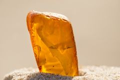 Amber in sun on a beach of the Baltic sea Stock Images