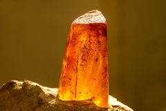 Amber in sun with inclusions. And blurred background stock photo