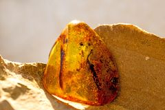 Amber in sun with inclusions. And blurred bakcground royalty free stock image