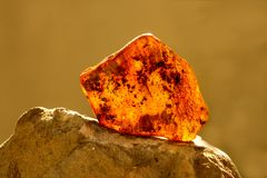 Amber in sun with inclusions. And blurred background stock photos