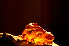 Amber in sun with inclusions. Frog figure royalty free stock photography