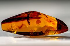Amber in sun. With inclusions Stock Photo