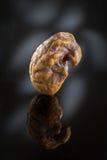Amber - Sunstone Stock Image