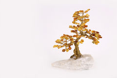 Amber tree. On  rock on white background Royalty Free Stock Photo