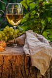 Amber wine in the glass. Georgian national wine according to old technology. Beautiful still life with a drink, fruits and decorations in a rustic style. Copy royalty free stock photo