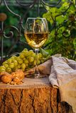 Amber wine in the glass. Georgian national wine according to old technology. Beautiful still life with a drink, fruits and decorations in a rustic style. Copy royalty free stock images
