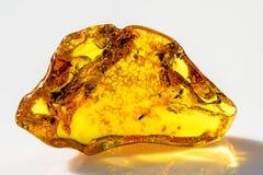 Amber in zon royalty-vrije stock foto
