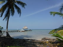 Ambergris Caye Belize da extremidade norte Fotografia de Stock