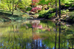 Ambiance. Quiet pool with small waterfall is complete with Koi fish.  Japanese maples and pink dogwoods reflect in pool.  Garvan Woodland Gardens in Hot Springs Stock Photography