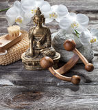 Ambiance for peeling and soothing treatment with Buddha in mind Stock Photography