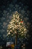 Ambient scene with Christmas tree on dark background Stock Photography