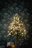 Ambient scene with Christmas tree on dark background Royalty Free Stock Image