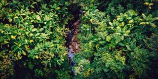 ambientale Fotografia Stock Libera da Diritti