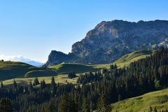 Ambiente alpino alle alpi svizzere immagini stock