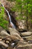 Ambiente de Gualba Gorg Negre. Montseny, España. Imagen de archivo