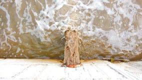 Ambiente de la contaminación del tubo de desagu'e o del drenaje El dren lleva las aguas residuales Agua sucia que descarga direct metrajes