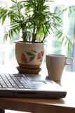 Ambiente do escritório Imagem de Stock