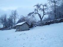 ambiente do inverno Fotografia de Stock Royalty Free