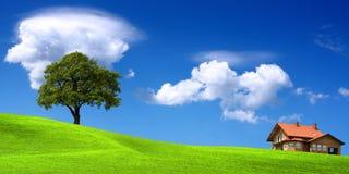 Ambiente ecológico Fotografia de Stock Royalty Free