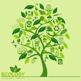 Ambiente, elementi infographic di ecologia Rischi ambientali, Fotografie Stock