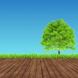 Ambiente verde e de madeira do fundo Foto de Stock