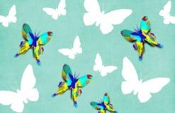 Carta da parati di Decoupage della farfalla Fotografie Stock