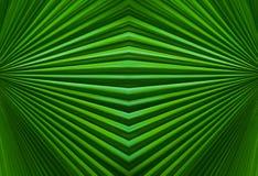 Ambiti di provenienza astratti di stile delle foglie Fotografie Stock