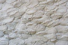 Ambiti di provenienza concreti della vecchia parete grigia del cemento strutturati Fotografia Stock Libera da Diritti