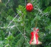 Ambiti di provenienza dell'albero di Natale immagine stock libera da diritti
